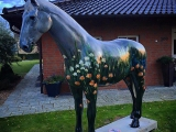 #pony in flowers#